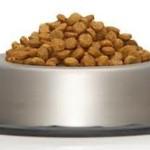 Is Gluten free dog food better?